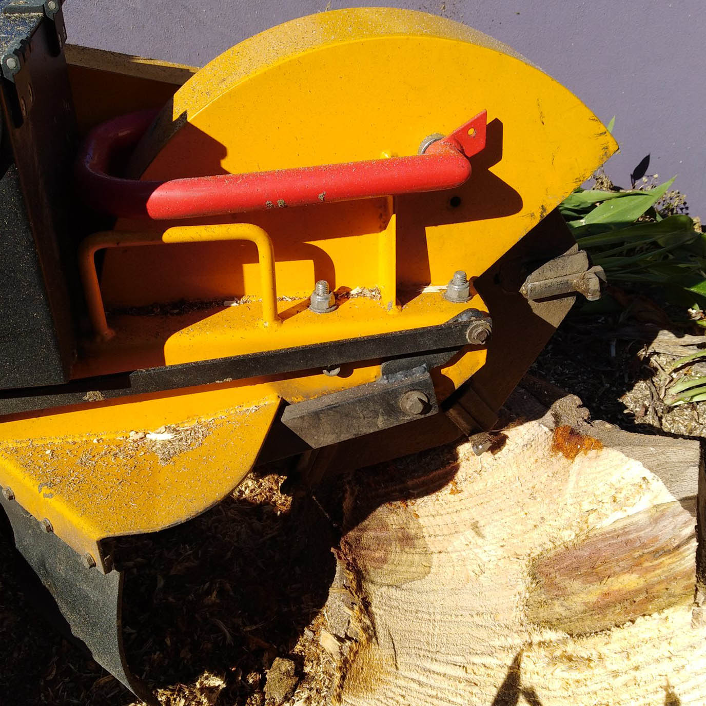 stump grinding christchurch